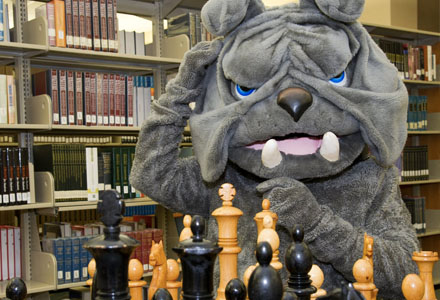 Bulldog mascot at chess board